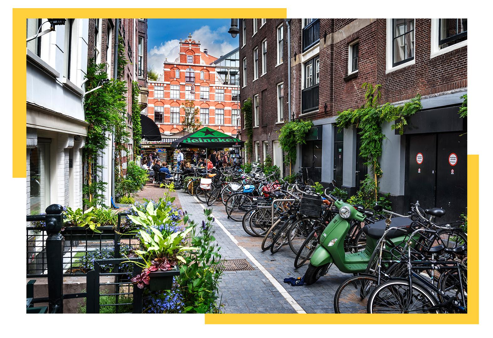 Амстердам. Крейзі Лама