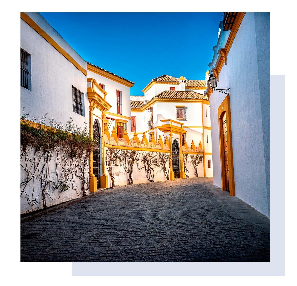 Севилья. Испания. Крейзи Лама