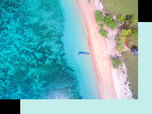 1 Пинк Сэнд Бич (о. Харбор, Багамские острова) / Crazyllama / Crazy Llama / Крейзи Лама / Крейзі Лама